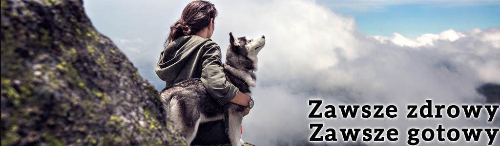 Infekcja, przeziębienie, stan zapalny, Forza10 Diet to karma dla psa, której składniki: ananas, papaja i granat pozwolą Ci nie martwić się takimi problemami.
